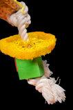 papegaaienspeelgod dieca magische hoed 2
