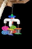 papegaaienspeelgoed - dieca - fouraging cup quatro 1