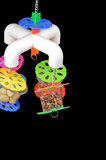 papegaaienspeelgoed - dieca - fouraging cup quatro 5