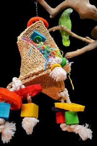 papegaaienspeelgod dieca magische hoed 1