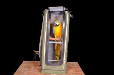 papegaaien rugzak X-Large celltei pak o bird 1